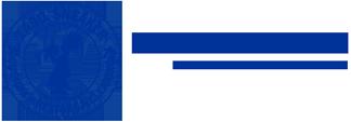 Labo Sneaker Logo